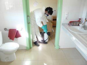 fumigación contra insectos en residencias