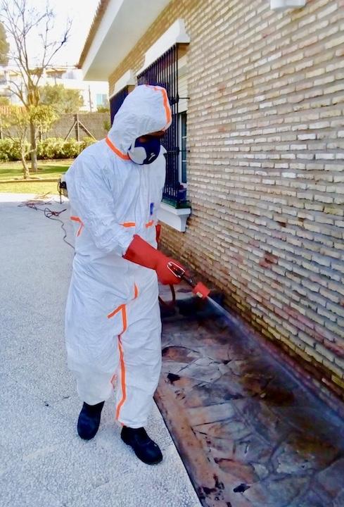 fumigaciones contra hormigas y cucarachas