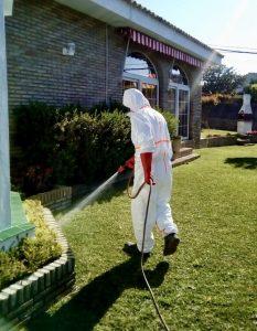 fumigacion contra insectos. erradicacion de plagas