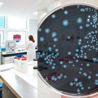 Laboratorio y analisis de muestras en cadiz